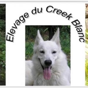Du Creek Blanc