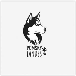 Pomsky Landes